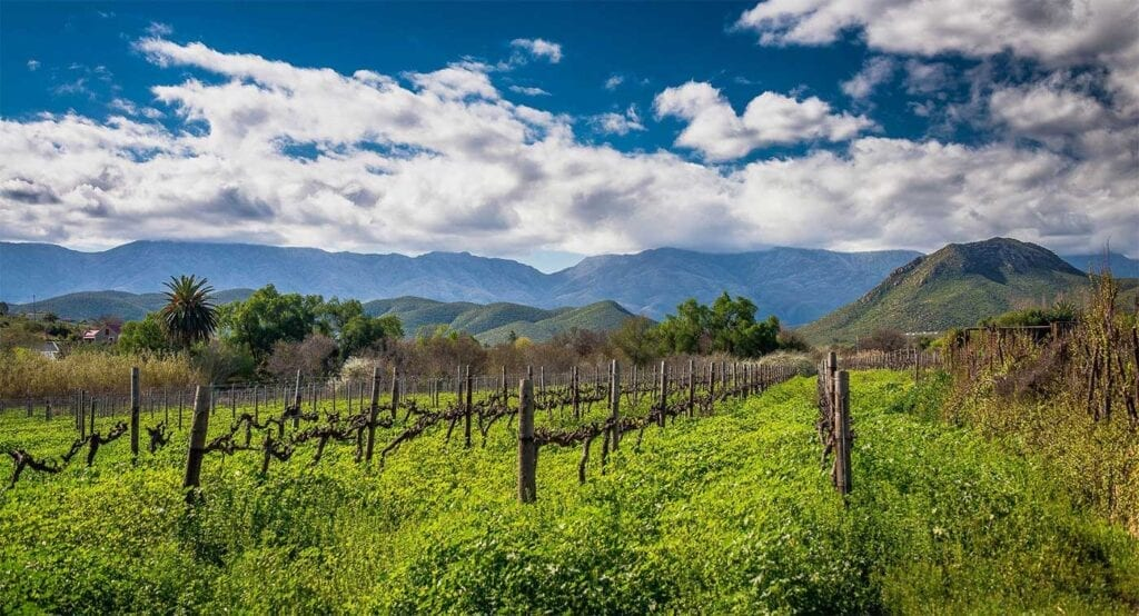 calitzdorp cover image